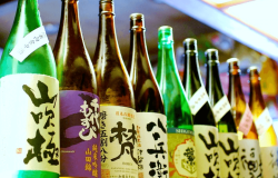 Colorful bottles of sake lined up, each facing forward with its own unique labels.