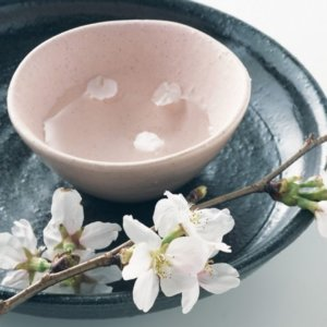 A pale pink Ochoko cup holds sake inside with a few Sakura cherry blossom petals floating on top. A small branch of the Sakura is pictured next to it.