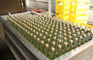 Many bottles of sake sitting in a tank, cooling down after a HIire treatment.