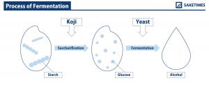 SAKETIMESinfographic_process-of-fermentation