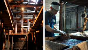 Dive Deeper into Local Sake and Soy Sauce Culture in Kawagoe