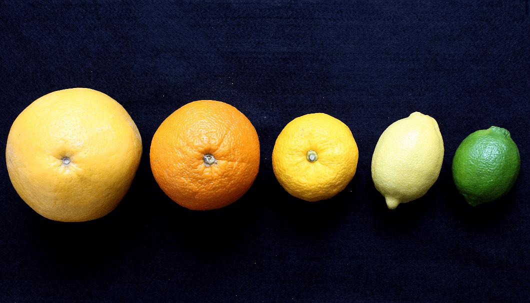 Grapefruit, Orange, Yuzu, Lemon, and Lime.