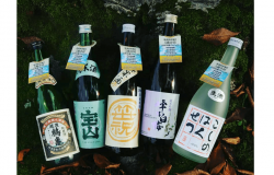 Five Niigata Sake Breweries Join Forces to Save Forests