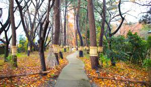 KIKUSUI Sake Culture Institute