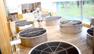 The Setsugoro Brewery's fermentation tanks