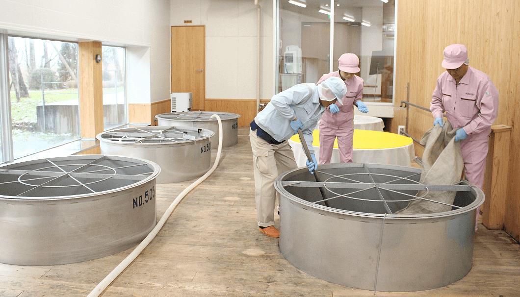 taking care of sake in tank